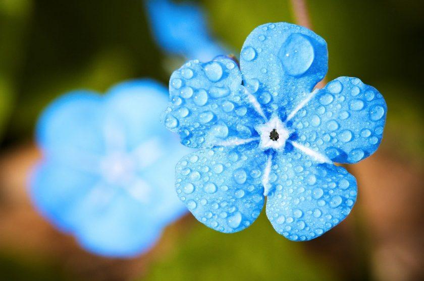 APS Pijnbestrijding Groot Hilda Alternatieve geneeswijzen