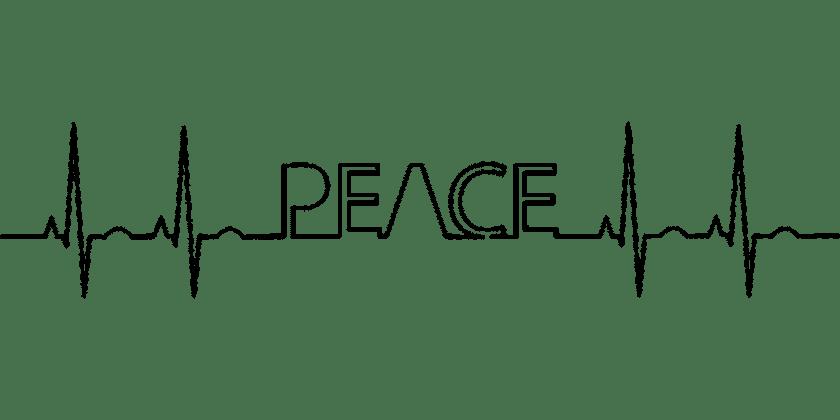 Buitenhuizen Epilepsiecentrum Kempenhaeghe depressie puber