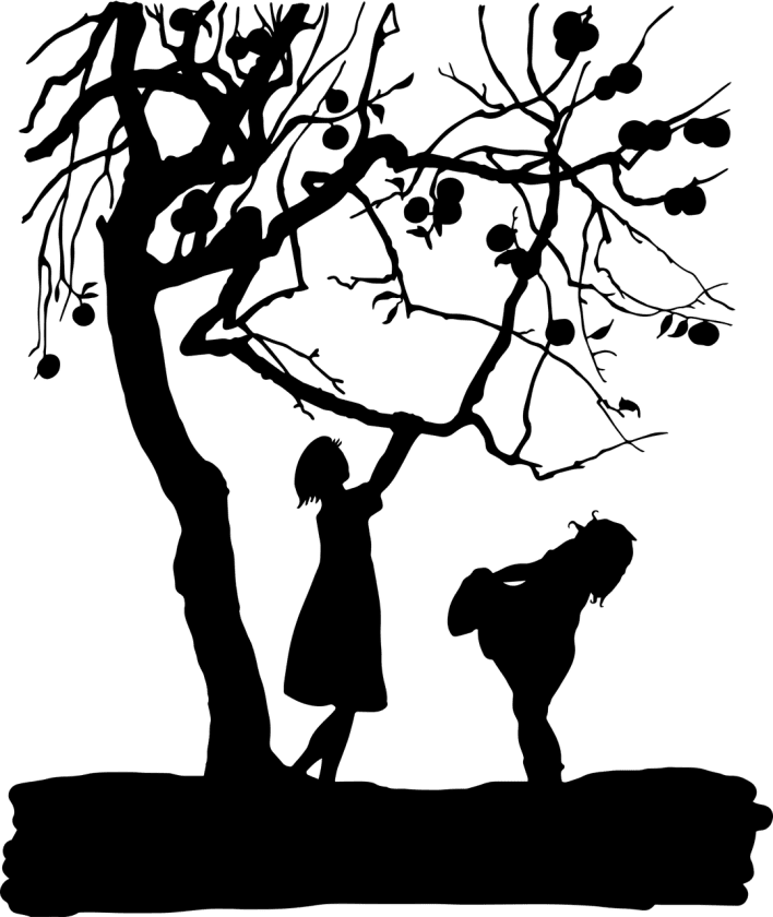 Dolly's Praktijk beoordelingen jeugdzorg mediator