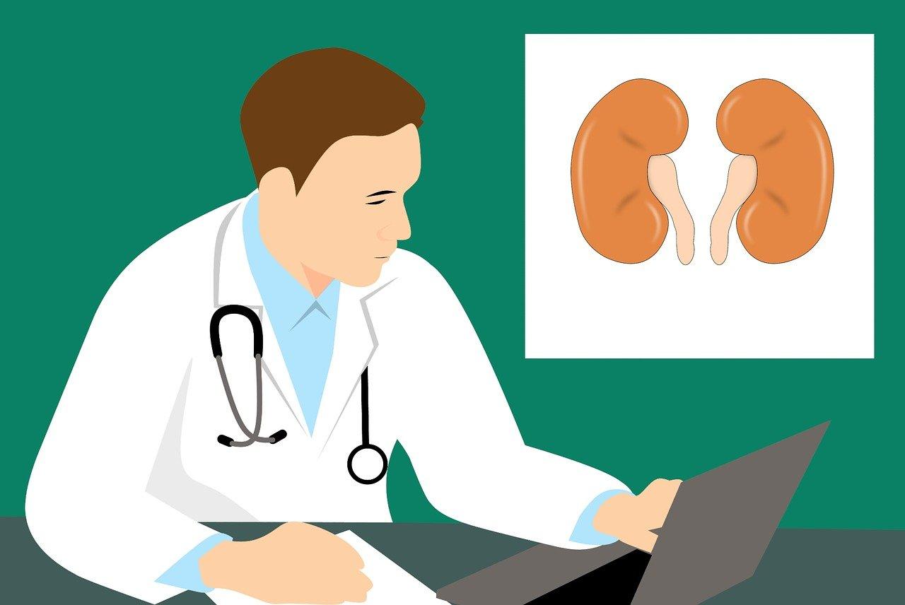 DRHF waarneming artsen opleiding