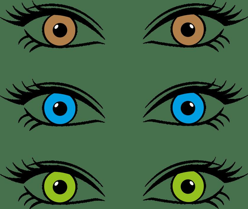 Eyecare Brilservice Waagmeester ervaringen opticien