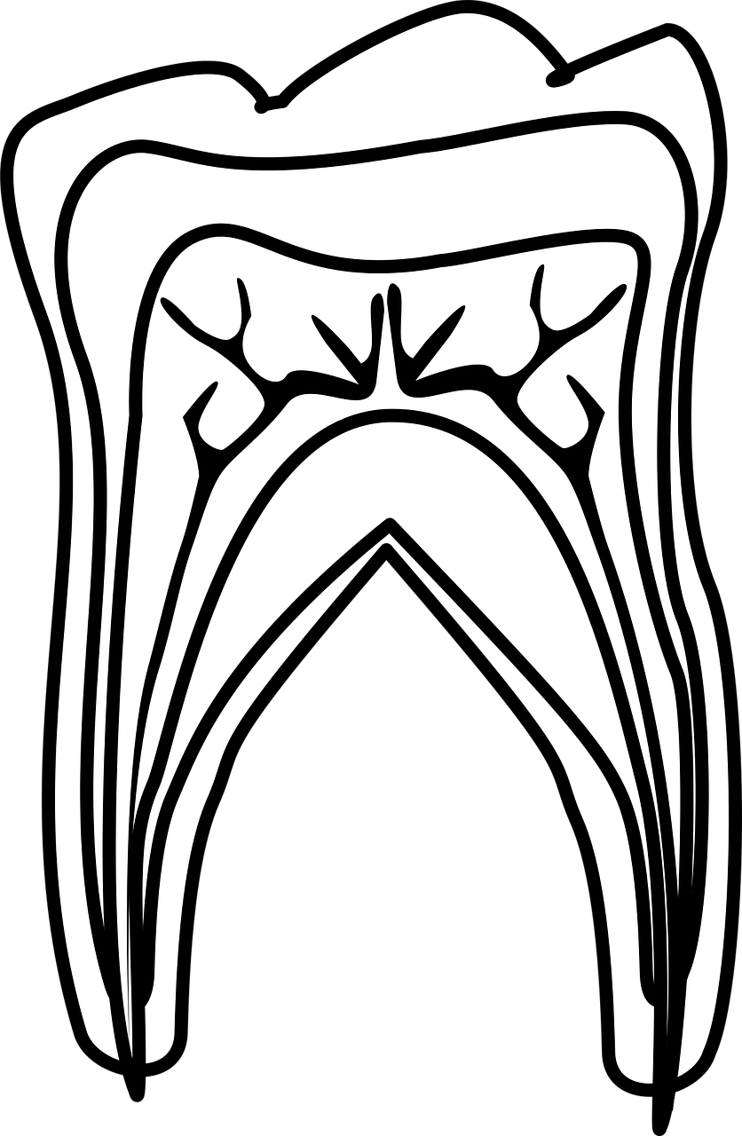 Eysink J F H tandarts