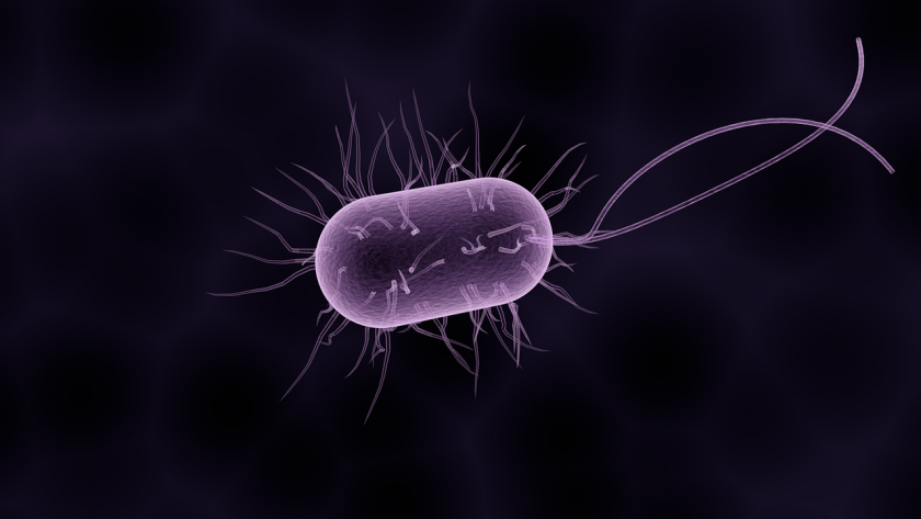 Geffen Huisartsenpraktijk diarree huisarts