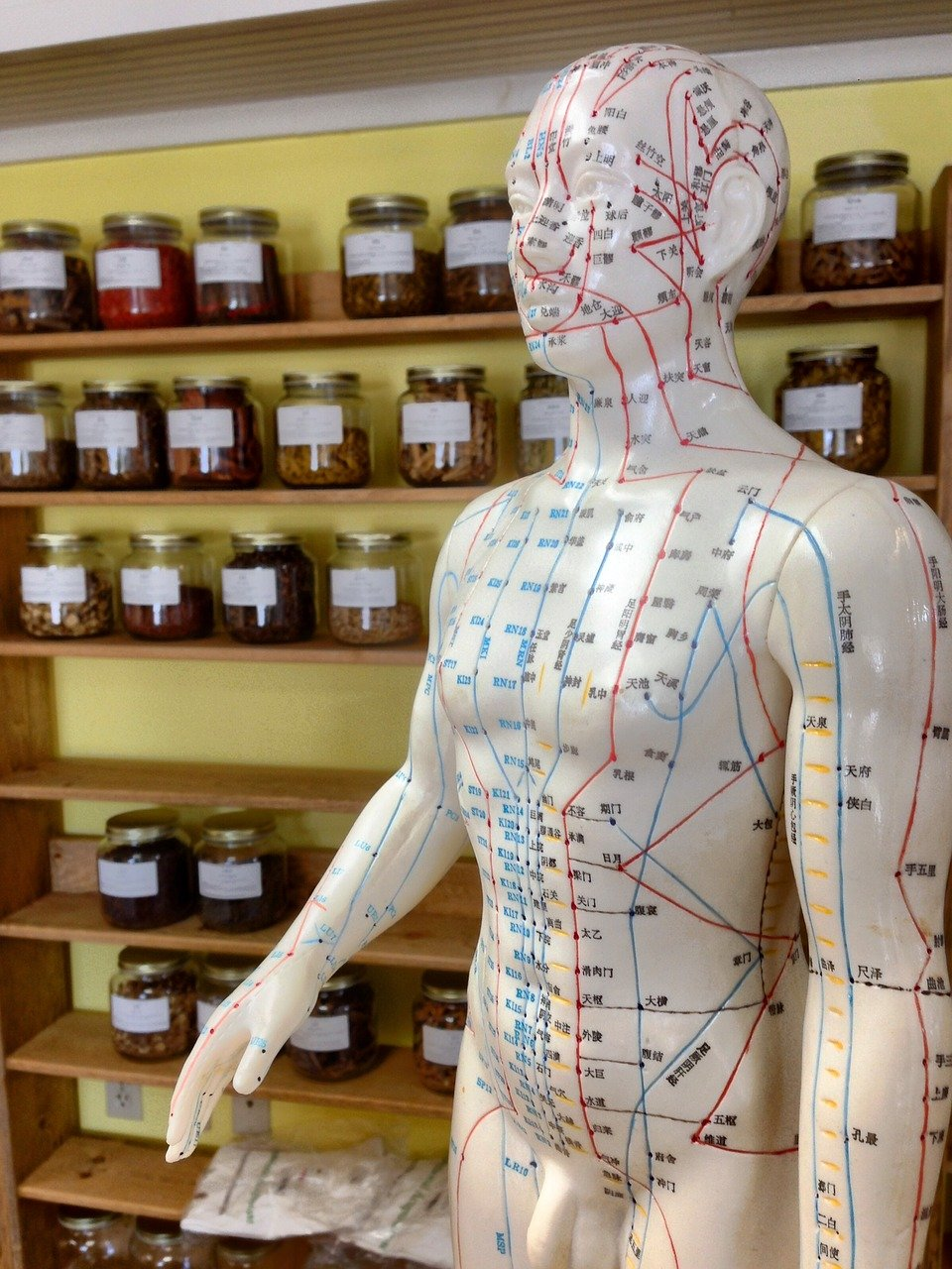 Heilpraktiker Gezondheidsprak Nieuwe Eetstijl Medical Weight Loss & Health D'r massage fysio