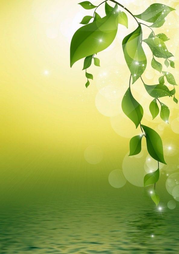 Het spirituele huisje lotus Praktijk - Winkel - webshop Ervaren Praktijk Alternatieve Geneeswijze
