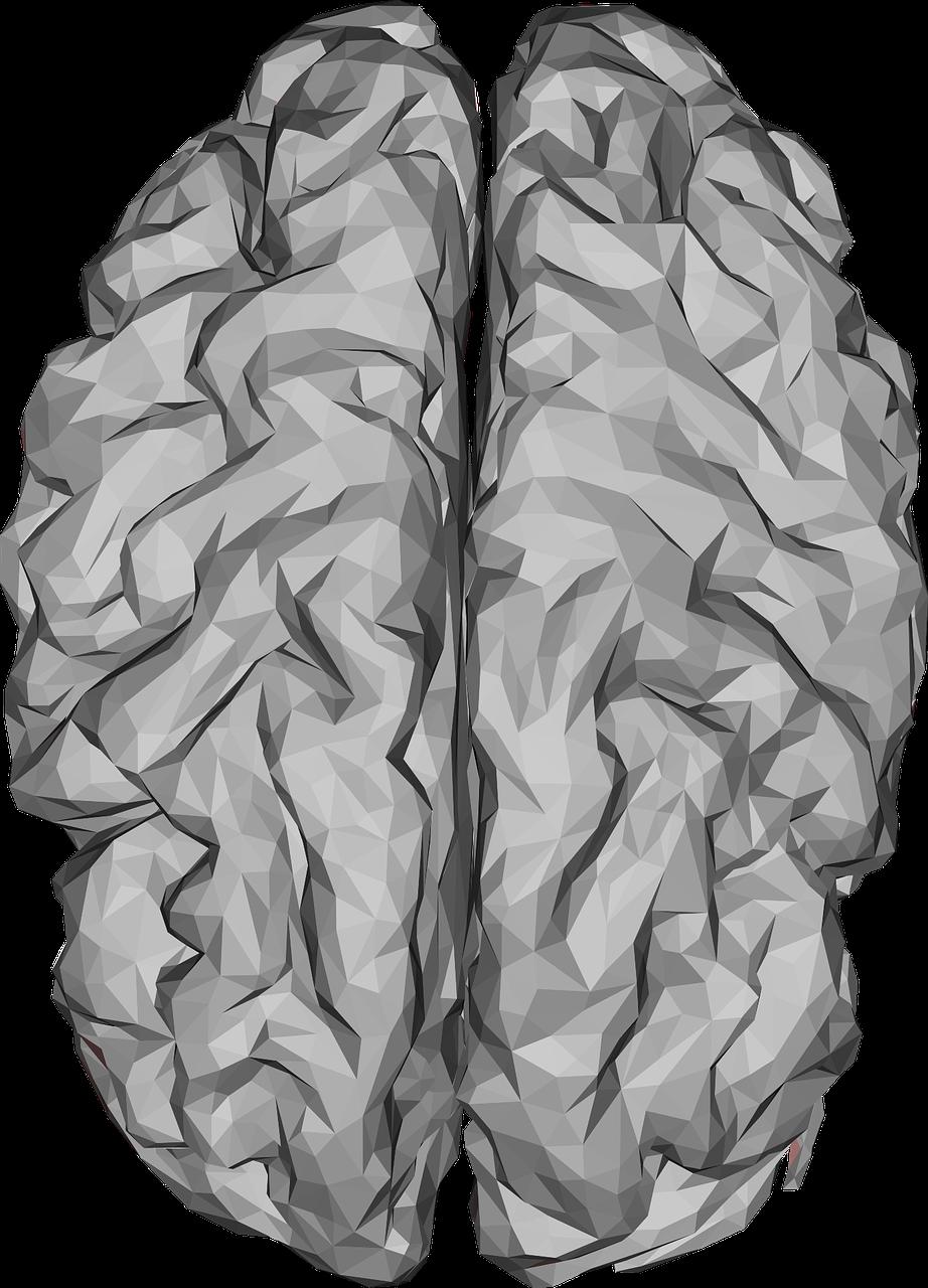 Hoeksema Psychiatrie & Psychotherapie Psychiatrische zorg instelling contactgegevens ervaringen