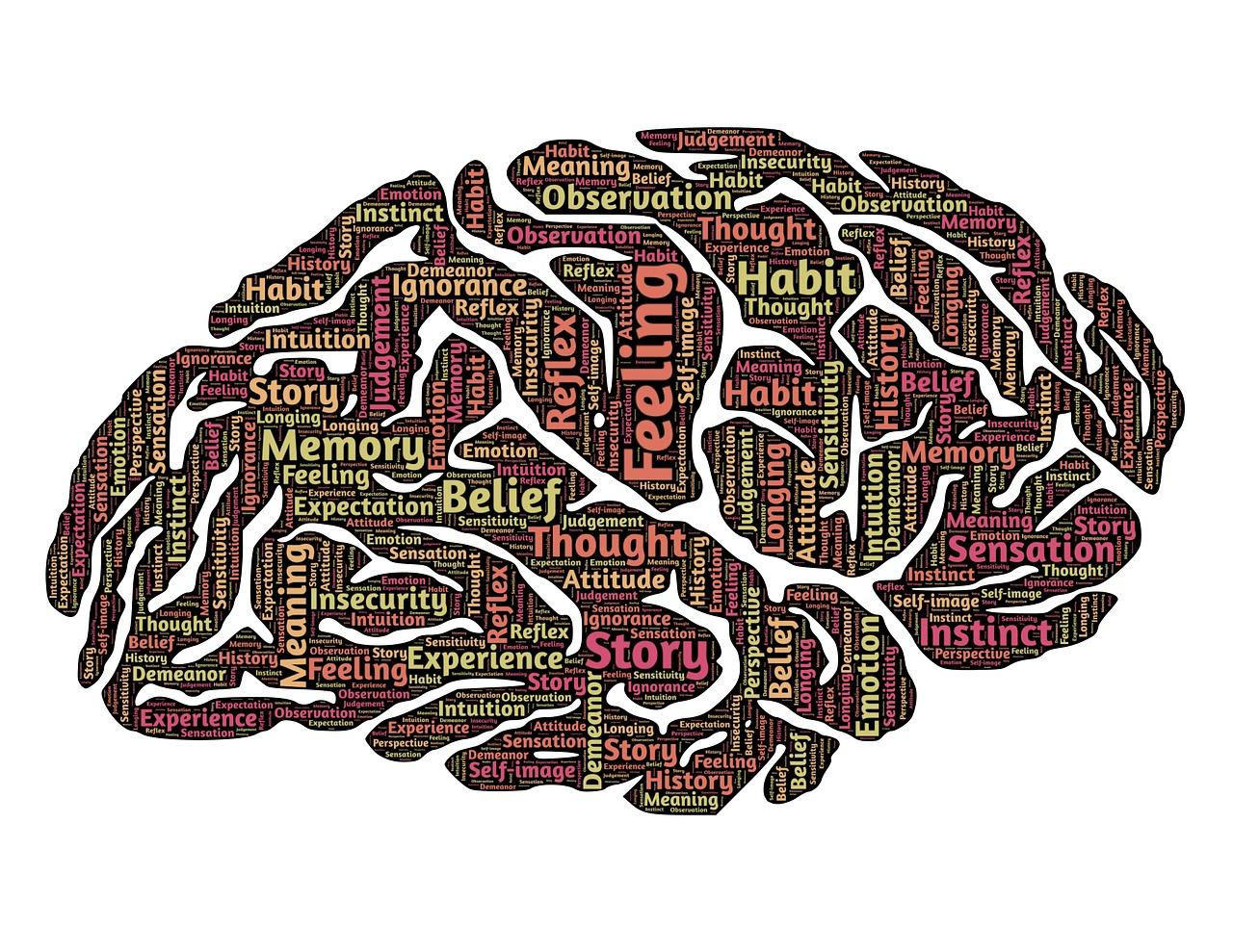 JR Medical Consultancy kosten Psychiatrische instelling