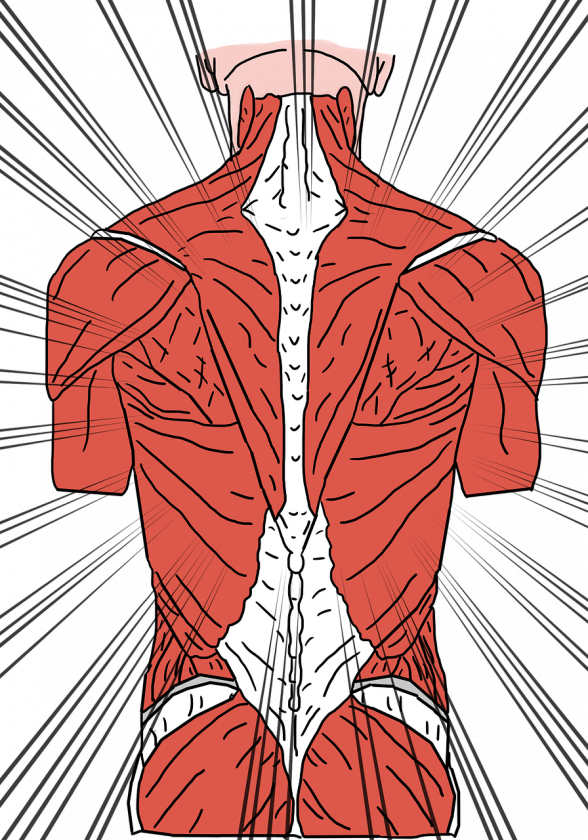 Kok-Truijens Fysiotherapie Manuele Therapie fysio