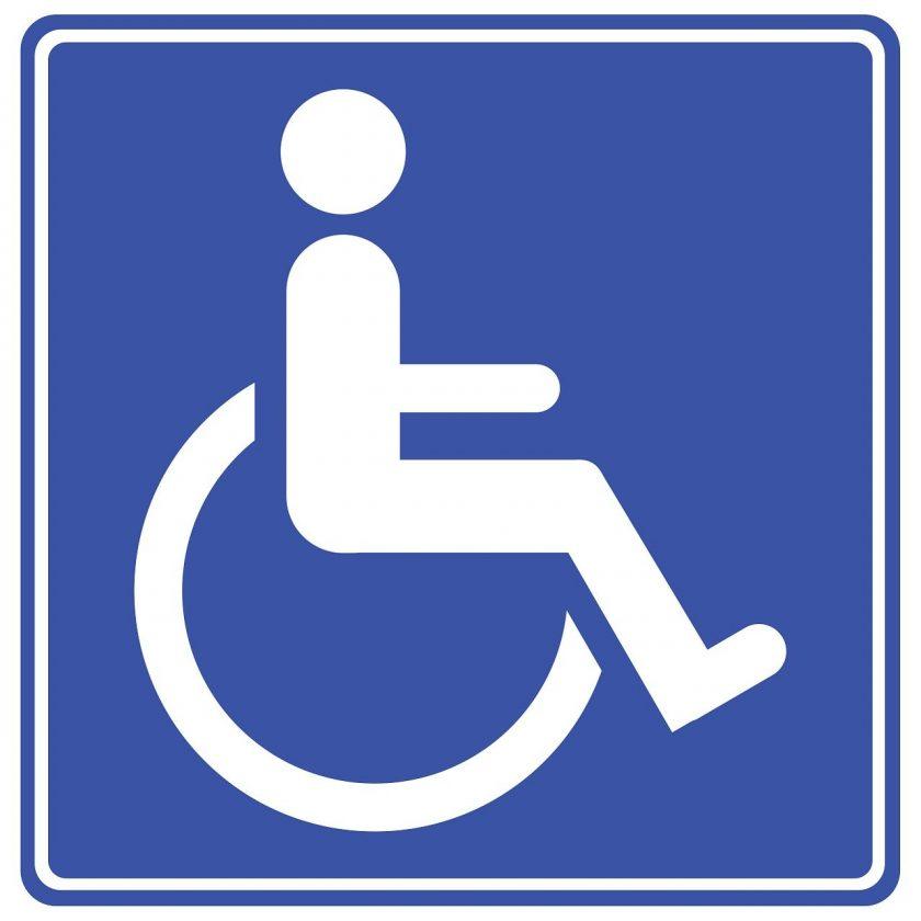 Kunstgreep De instellingen voor gehandicaptenzorg verstandelijk gehandicapten