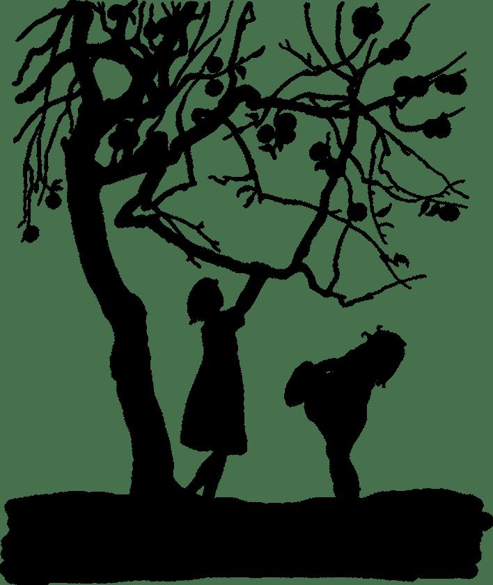 McGBegeleiding beoordeling jeugdhulp mediation