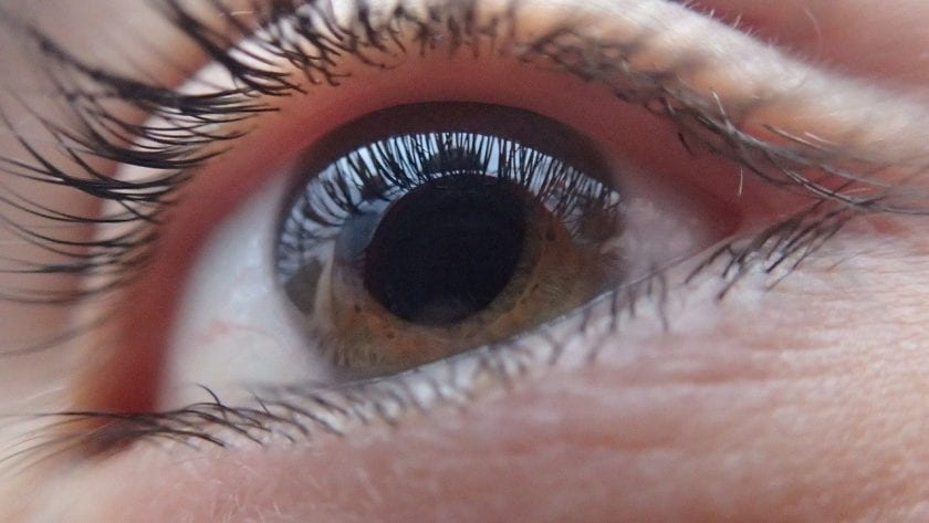 Optiek De Wolff ervaring opticien contactgegevens