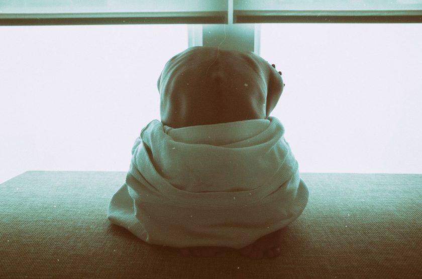Praktijk voor Kinderfysiotherapie Kampen dry needling