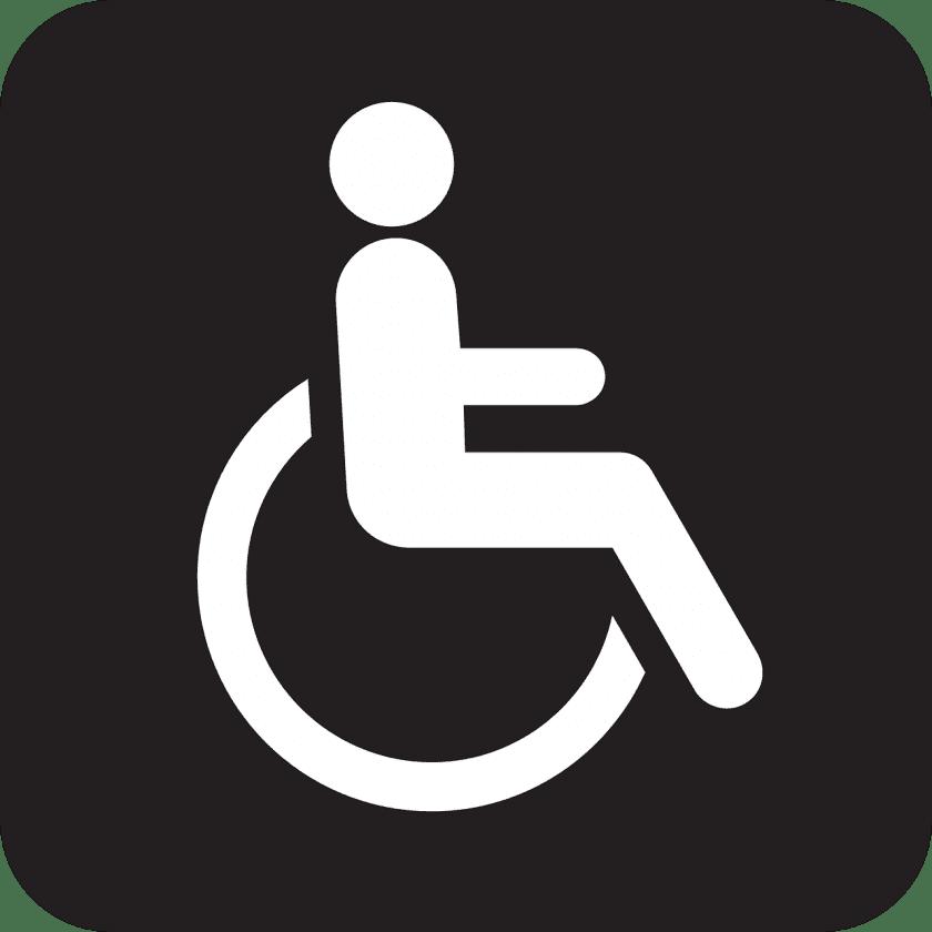 Pruis Zorg Ervaren gehandicaptenzorg