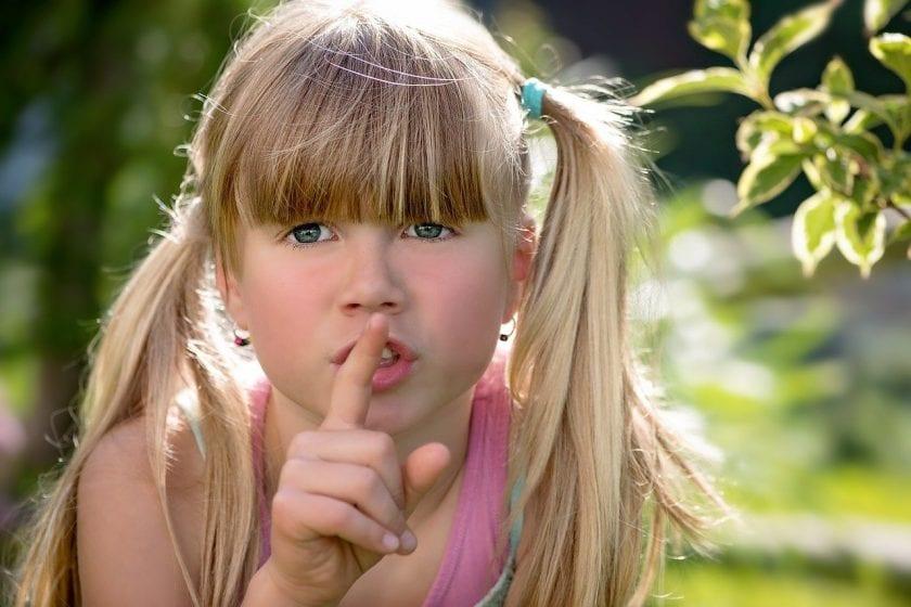Psychologisch Adviesbureau Alfrink-Pattynama jeugdhulp mediation ervaringen