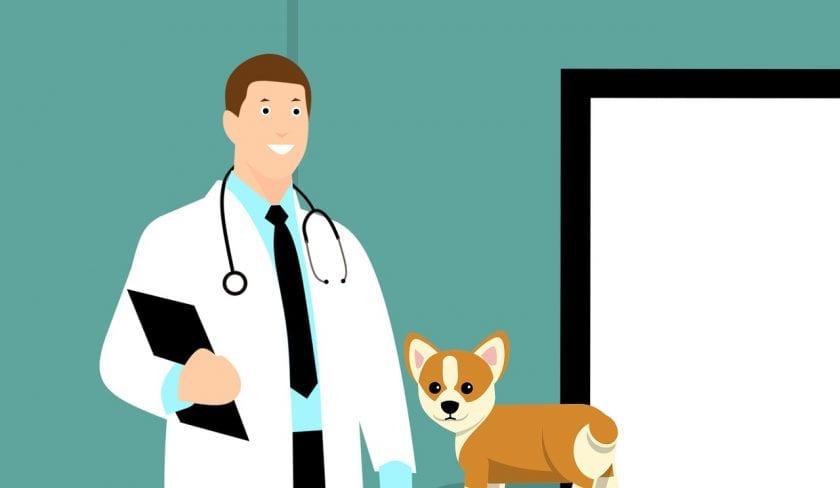Renew Clinic instellingen voor klinieken