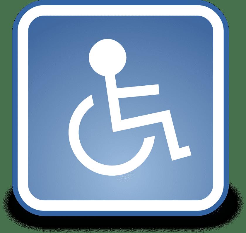 Roemerij De instellingen voor gehandicaptenzorg verstandelijk gehandicapten