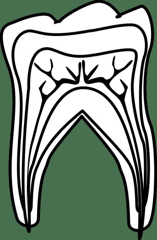 Schokking C C wanneer spoed tandarts