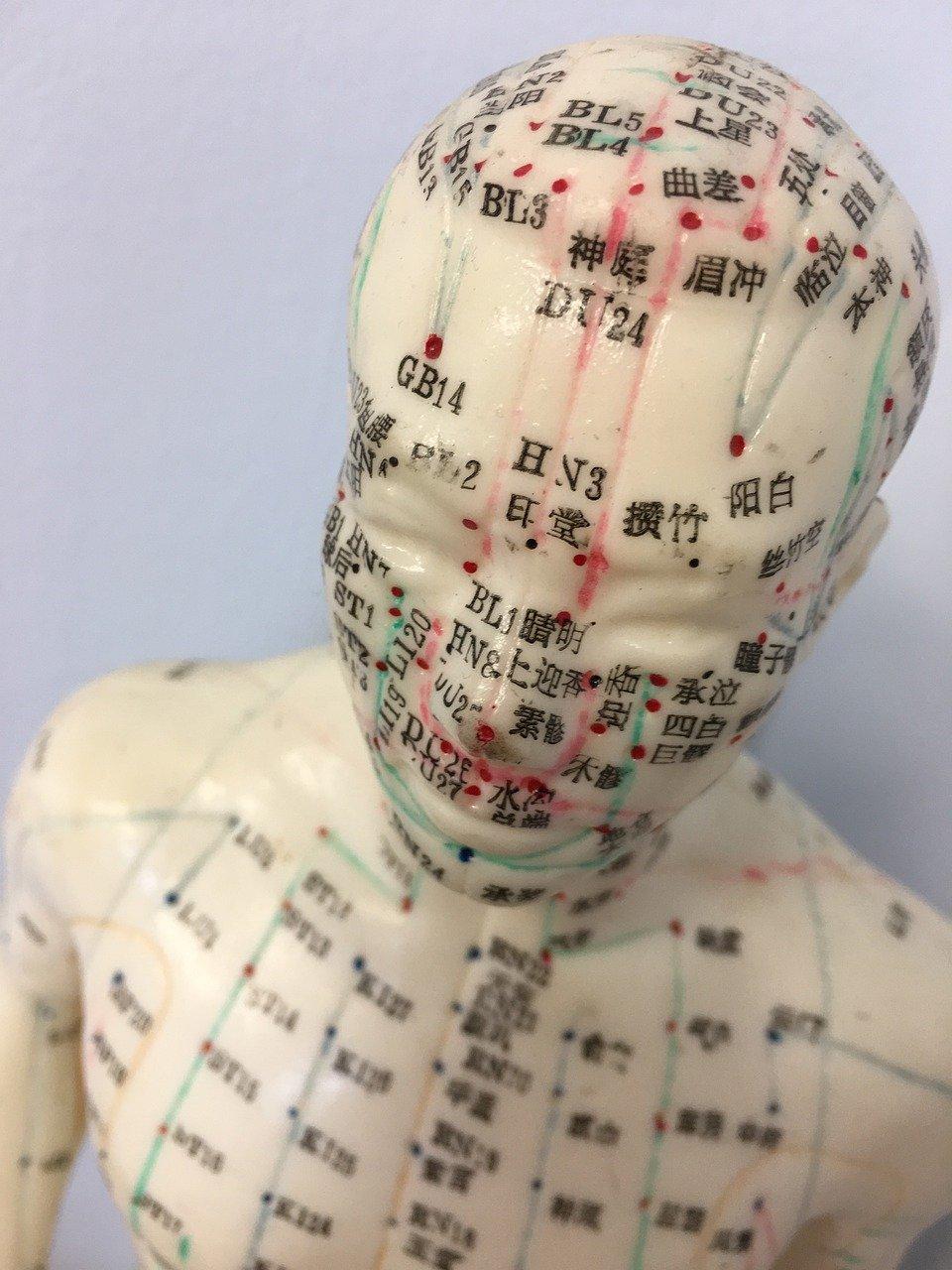 Shiatsucare fysiotherapeut