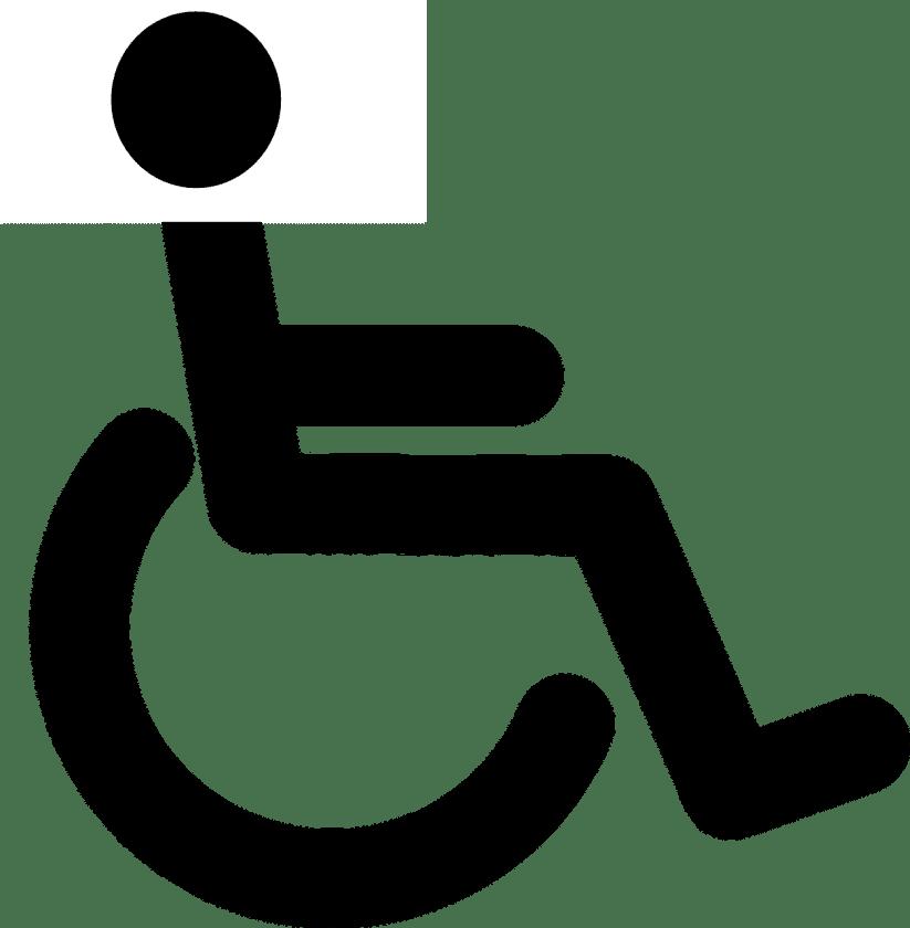 Sylvia van IJsseldijk instellingen gehandicaptenzorg verstandelijk gehandicapten