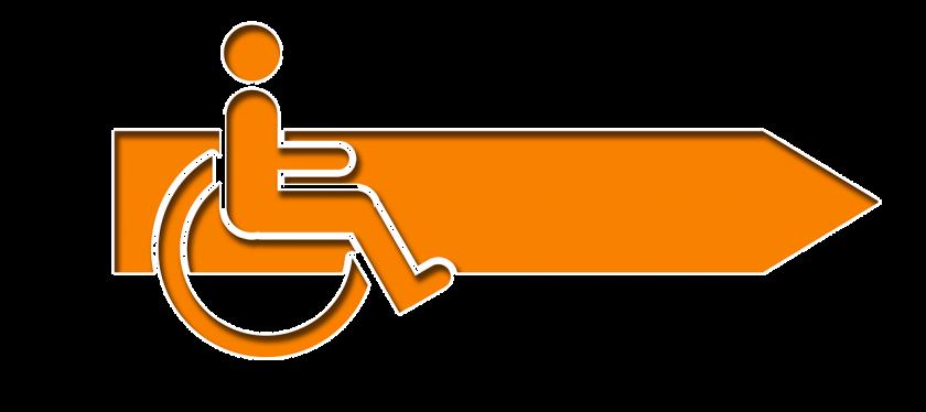 Tuinstee Individueel Wonen Project instellingen gehandicaptenzorg verstandelijk gehandicapten kliniek review