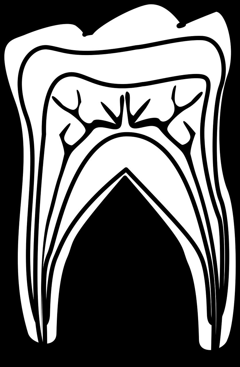 Vorst J J vd tandarts onder narcose