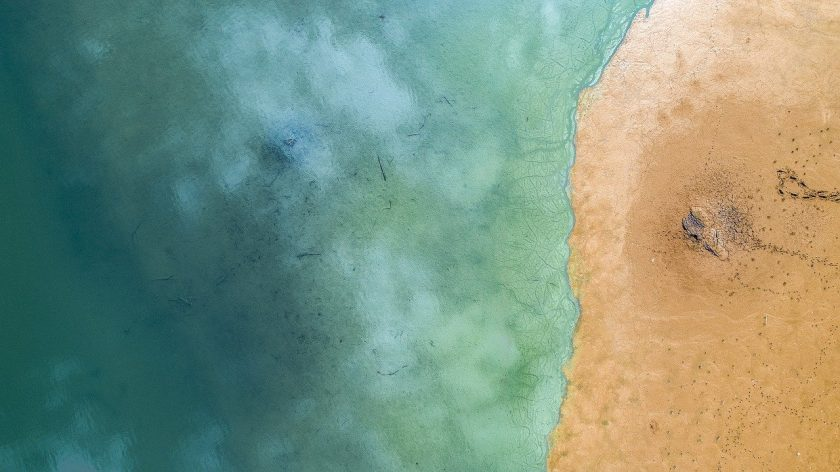 Wit Biodynamische Therapie Liesbeth de artsenpraktijken voor alternatieve geneeskunde