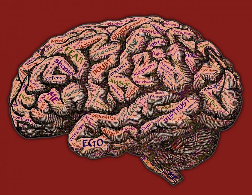 zorg met passie en kracht ervaringen Psychiatrische instelling