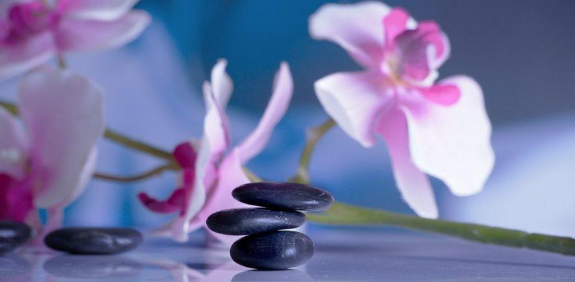 Zwart Fysiotherapie fysio manuele therapie