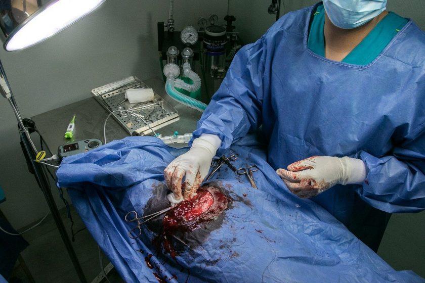 Stevens A L L M preventief medisch onderzoek